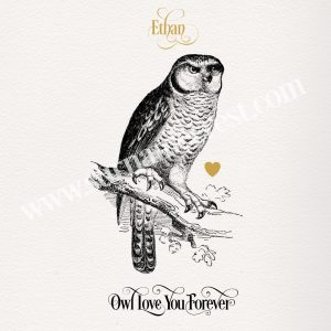 Print of Owl on Branch with Heart