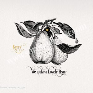 Graphic image pun of Pear - Pair.