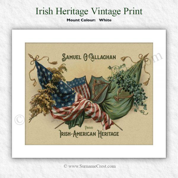Great gift to celebrate Irish American Heritage.