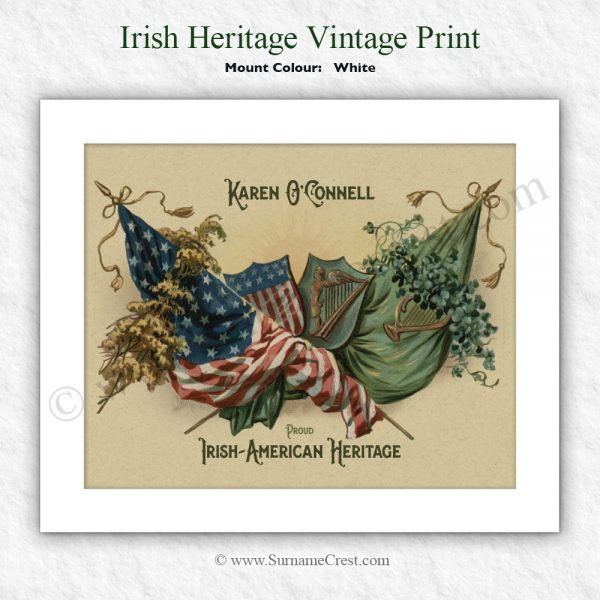 Irish and American flags personalised with your family name,
