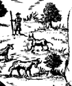 Herding and Hunting scene from 17th century Galway City Map Ireland